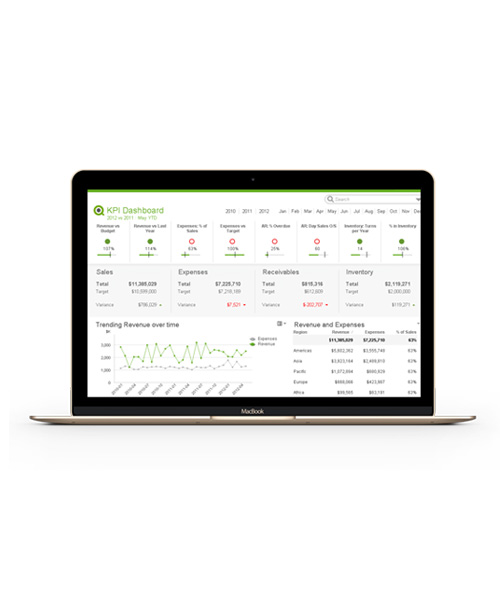 QlikView Screen